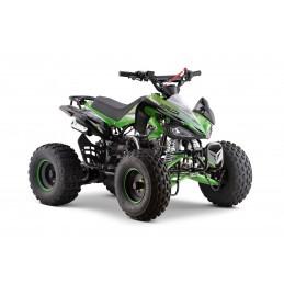 Viarelli Agrezza ATV 110cc...